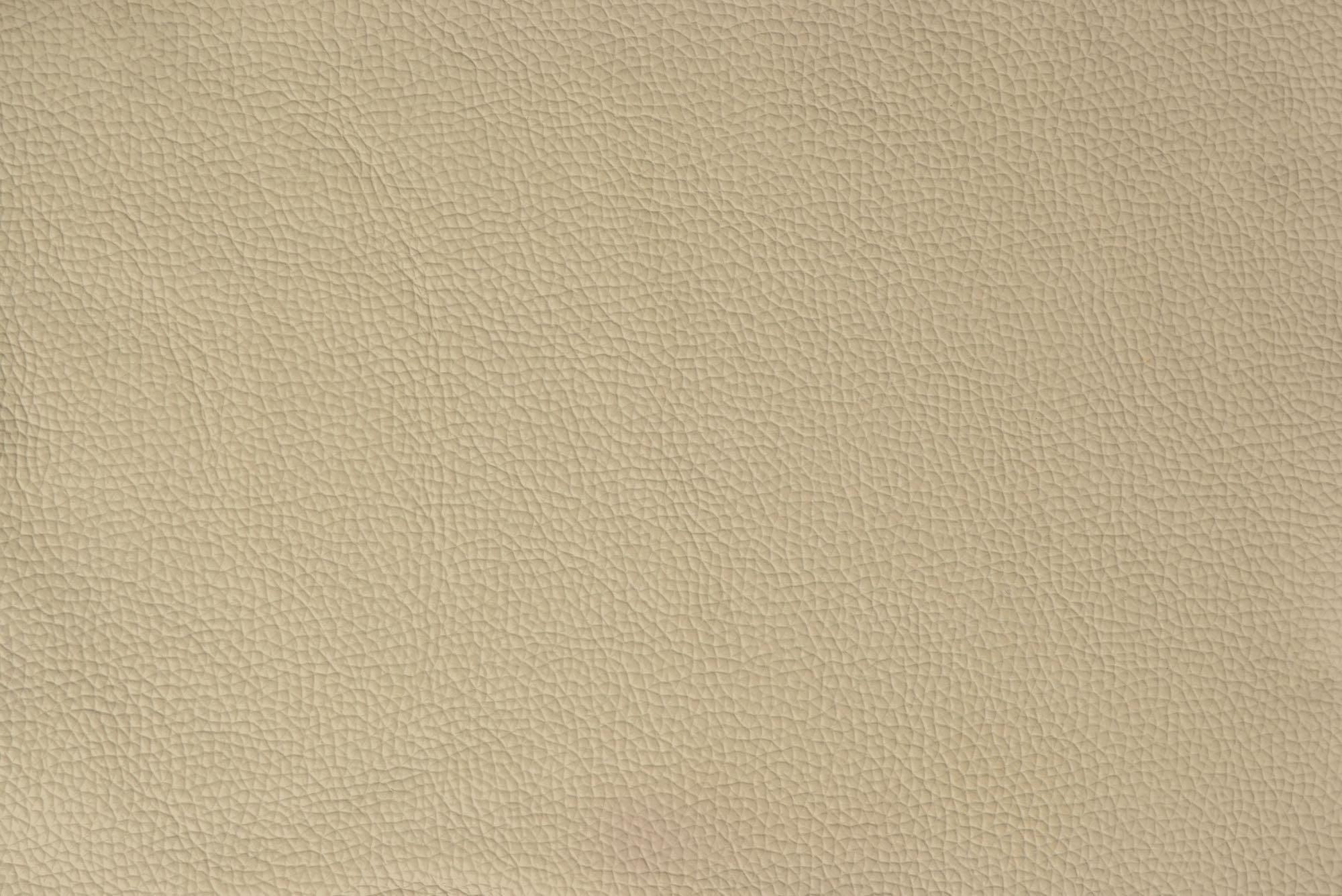 8815A WHITEの素材拡大画像