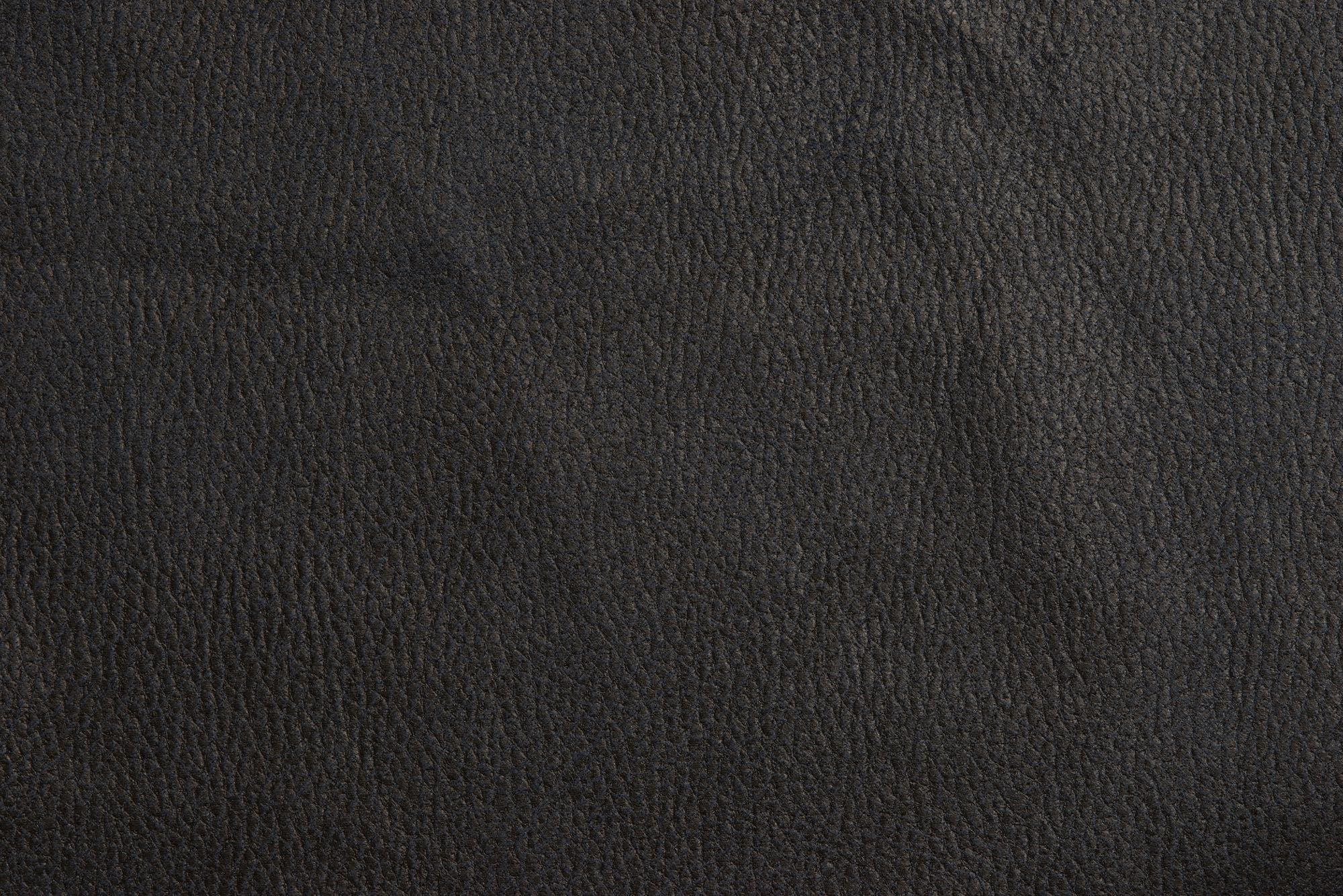 000000blankの素材拡大画像